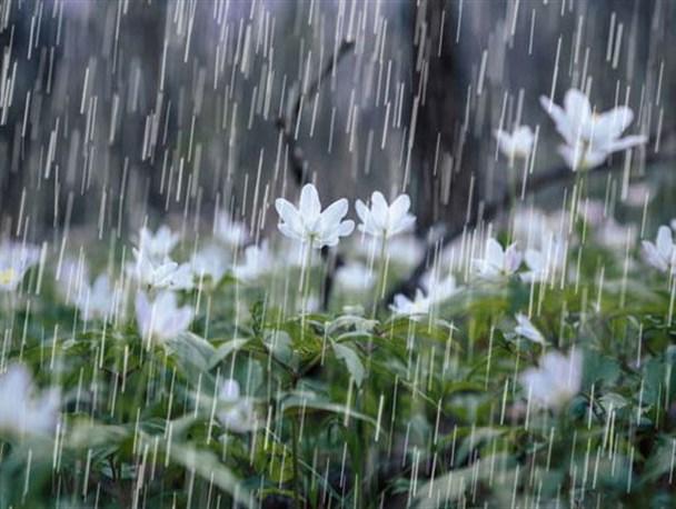 کاهش وحشتناک بارندگی در حوزه آبریز دریاچه اورمیه